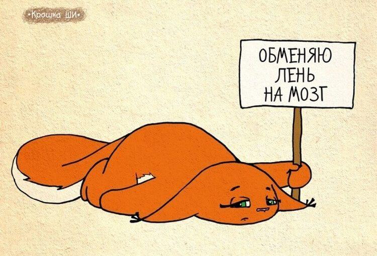 25 забавных комиксов о девичьей жизни от белки Ши