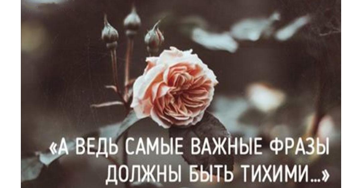 Очень проникновенное стихотворение Оксаны Мельниковой