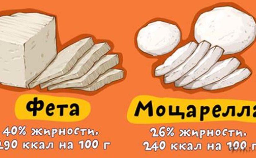 Рейтинг сыров: насколько они на самом деле (не)жирные и (не)калорийные