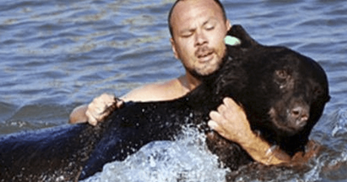 Медведь, которого пришлось спасать в воде — история из Флориды