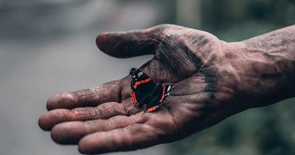 Мудрая статья о смысле жизни и о том, ради чего мы живём