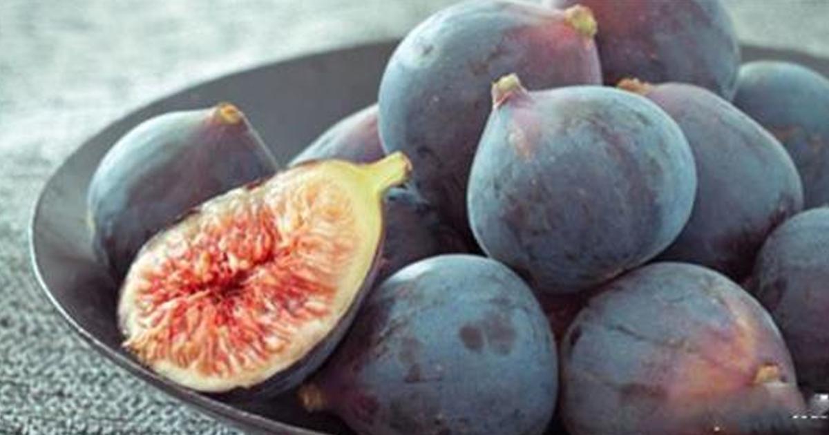 7 фруктов с наибольшей концентрацией железа