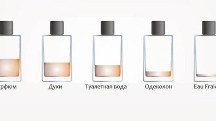 Полезно о разнице между духами, парфюмами, туалетной водой и одеколоном