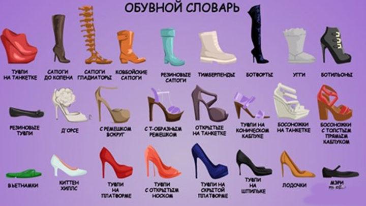 Полезный обувной словарь на все случаи жизни