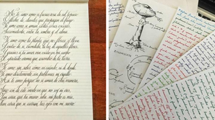 29 раз, когда чей-то почерк довел людей до эстетического ″оргазма″