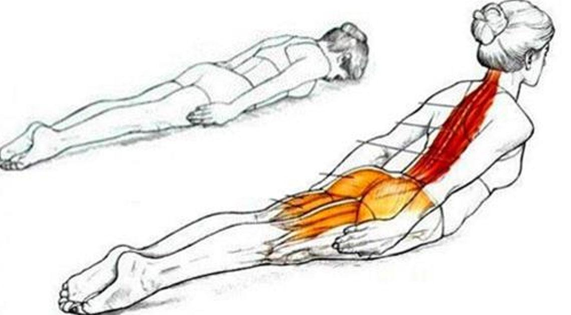 8 упражнений при плохой осанке и болях в спине
