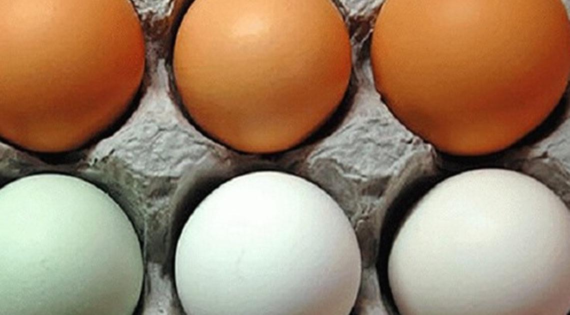 Статья о хранении яиц в холодильнике