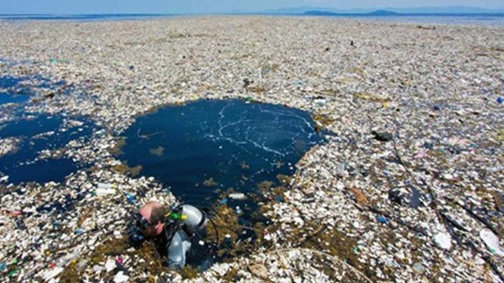 В Тихом океане из мусора образовался огромный остров